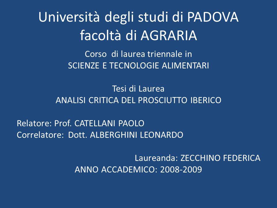 Università degli studi di PADOVA facoltà di AGRARIA Corso di laurea triennale in SCIENZE E TECNOLOGIE ALIMENTARI Tesi di Laurea ANALISI CRITICA DEL PR