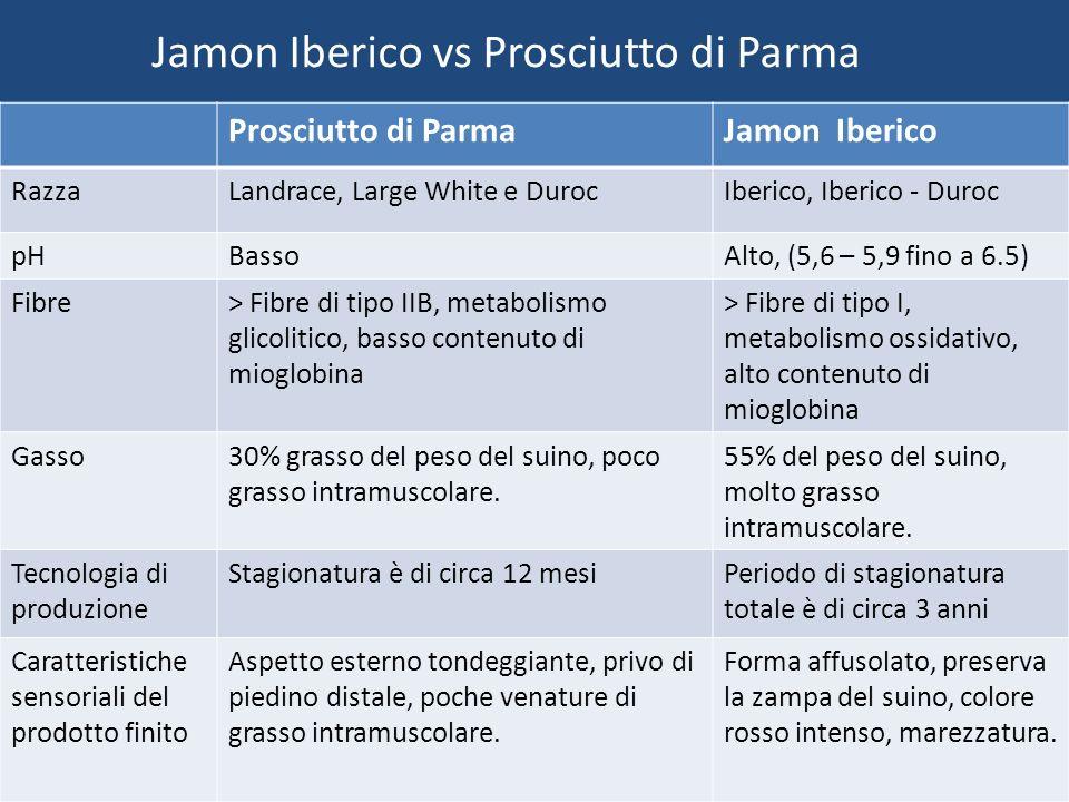 Jamon Iberico vs Prosciutto di Parma Prosciutto di ParmaJamon Iberico RazzaLandrace, Large White e DurocIberico, Iberico - Duroc pHBassoAlto, (5,6 – 5