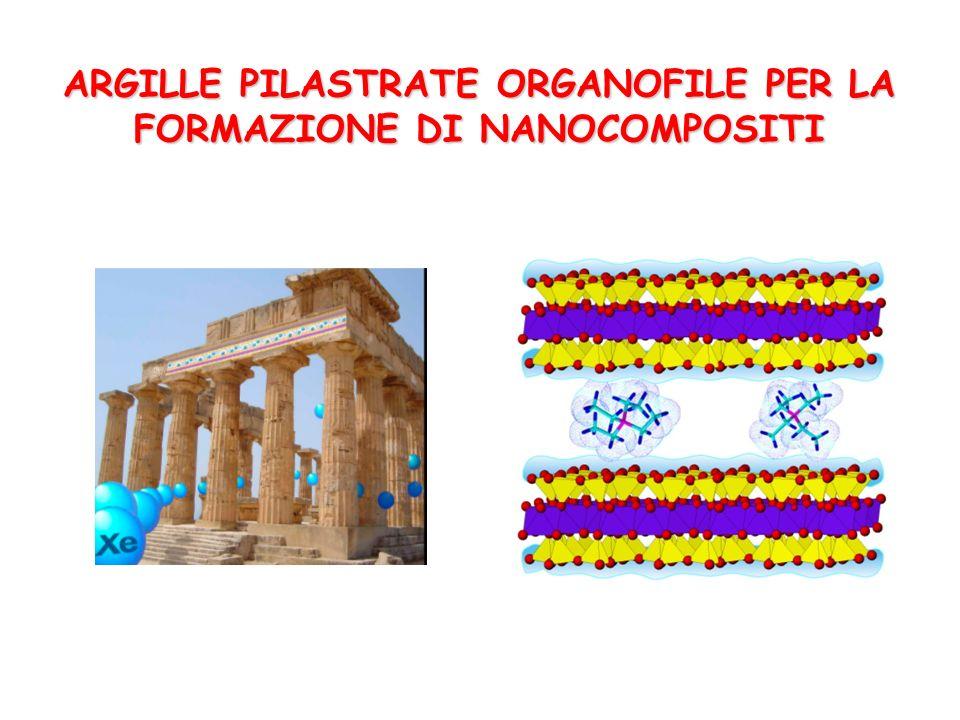 ARGILLE PILASTRATE ORGANOFILE PER LA FORMAZIONE DI NANOCOMPOSITI