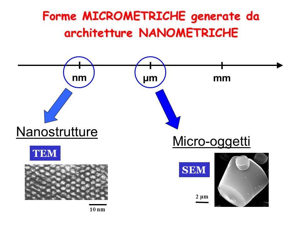 Micro-oggetti Nanostrutture IμmIμm I nm I mm 10 nm 2 μm TEM SEM Forme MICROMETRICHE generate da architetture NANOMETRICHE
