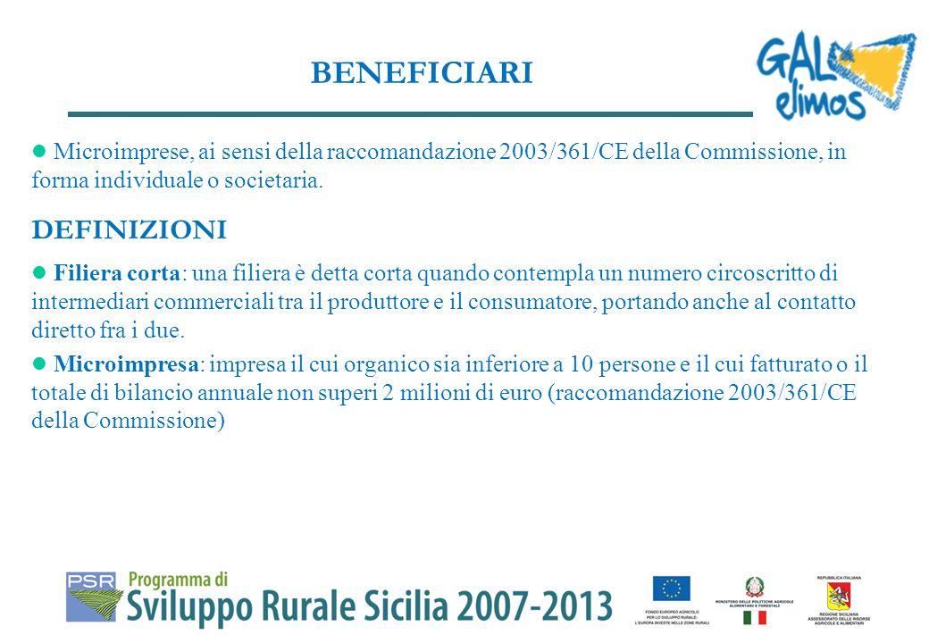 Azione A: Trasformazione e commercializzazione artigianale dei prodotti tipici non compresi nellAllegato I del Trattato (es.