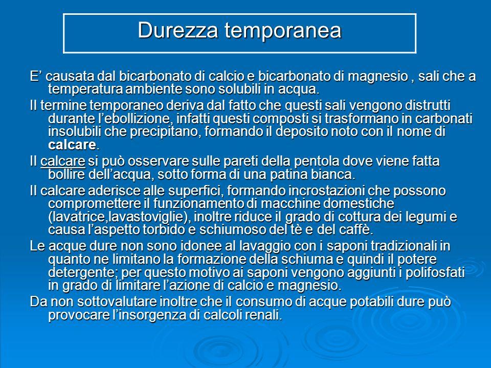 RISULTATI DETERMINAZIONE SEPARATA CALCIO E MAGNESIO DI DIVERSI CAMPIONI DI ACQUA - Scuola secondaria di 2° grado – Classe 2° A OCB e 2° B OCB Campione di acqua Calcio (Ca ++ ) (mg/l) Classe 2° A OCB Calcio (Ca ++ ) (mg/l) Classe 2° B OCB Calcio (Ca ++ ) (mg/l) Valore medio Magnesio (Mg ++ ) (mg/l) Classe 2° A OCB Magnesio (Mg ++ ) (mg/l) Classe 2° B OCB Magnesio (Mg ++ ) (mg/l) Valore medio Giudizio sullacqua analizzata n.123,022,622,82,83,73,2 Acqua calcica n.235,936,836,38,36,37,3 Acqua calcica n.369,970,870,314,60,97,7 Acqua calcica n.43,22,72,91,41,3 Acqua calcica