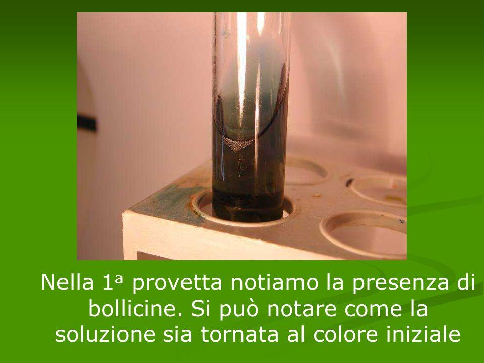Nella 1 a provetta notiamo la presenza di bollicine. Si può notare come la soluzione sia tornata al colore iniziale