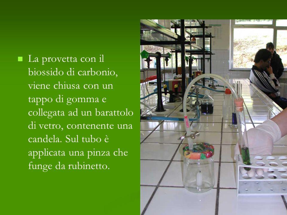 La provetta con il biossido di carbonio, viene chiusa con un tappo di gomma e collegata ad un barattolo di vetro, contenente una candela. Sul tubo è a