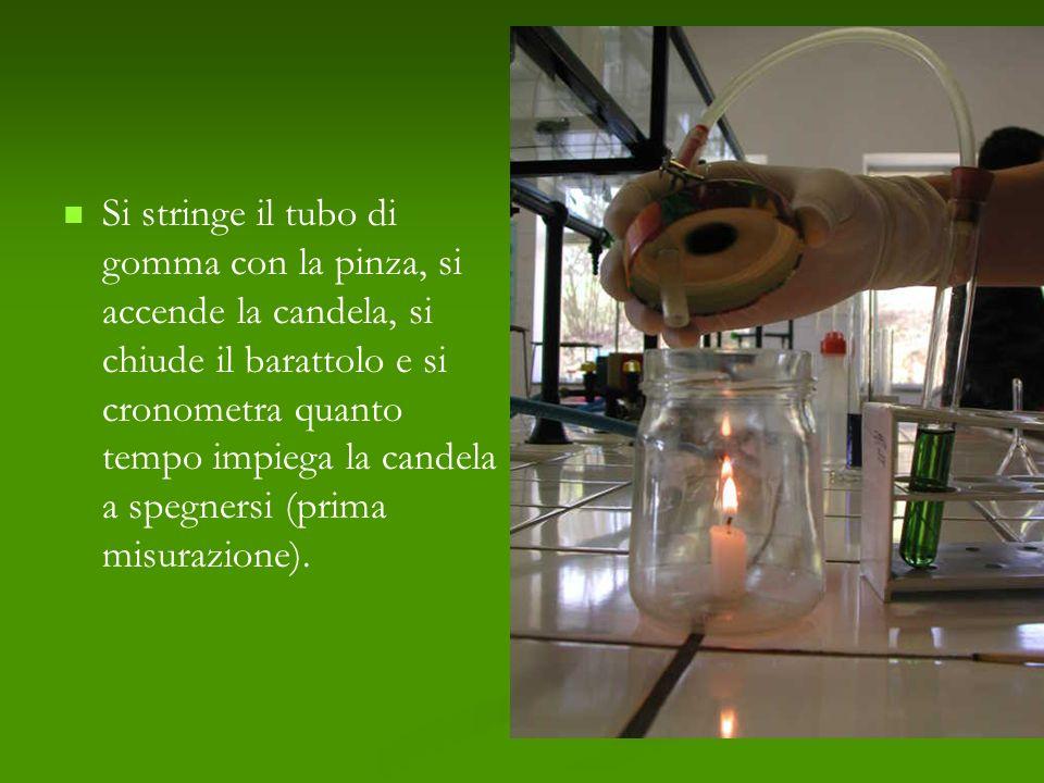 Si stringe il tubo di gomma con la pinza, si accende la candela, si chiude il barattolo e si cronometra quanto tempo impiega la candela a spegnersi (p