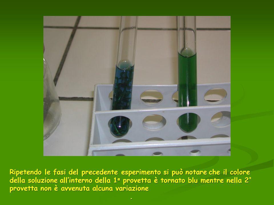 Ripetendo le fasi del precedente esperimento si può notareche il colore della soluzione allinterno della 1 a provetta è tornato blu mentre nella 2 ° p