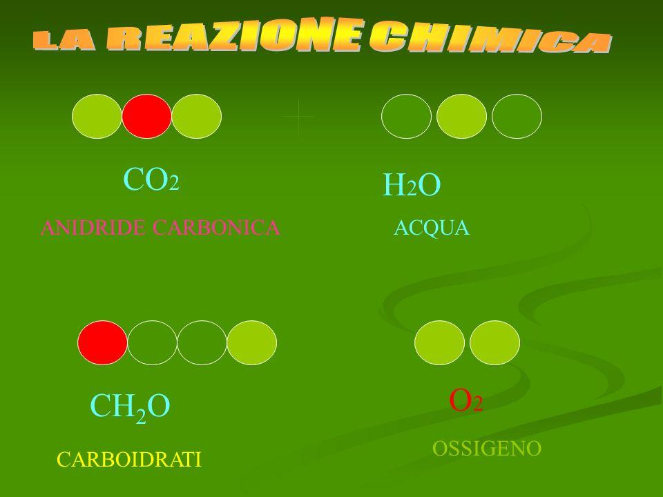 CO 2 H2OH2O ANIDRIDE CARBONICAACQUA CH 2 O O2O2 OSSIGENO CARBOIDRATI