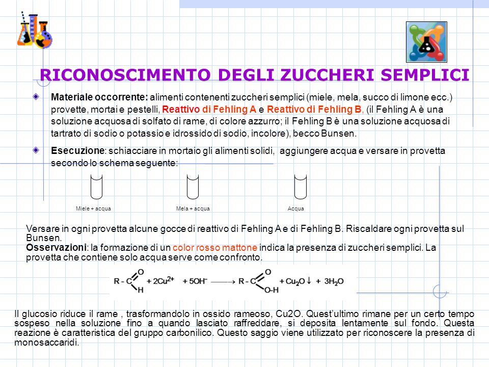 RICONOSCIMENTO DEGLI ZUCCHERI SEMPLICI Materiale occorrente: alimenti contenenti zuccheri semplici (miele, mela, succo di limone ecc.) provette, mortai e pestelli, Reattivo di Fehling A e Reattivo di Fehling B, (il Fehling A è una soluzione acquosa di solfato di rame, di colore azzurro; il Fehling B è una soluzione acquosa di tartrato di sodio o potassio e idrossido di sodio, incolore), becco Bunsen.