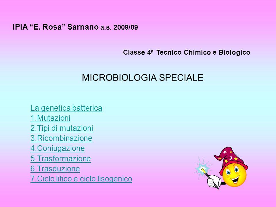 MICROBIOLOGIA SPECIALE La genetica batterica 1.Mutazioni 2.Tipi di mutazioni 3.Ricombinazione 4.Coniugazione 5.Trasformazione 6.Trasduzione 7.Ciclo li