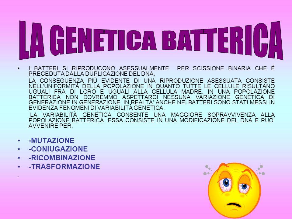 1.MUTAZIONI PER MUTAZIONE SI INTENDE UNA VARIAZIONE CASUALE ED EREDITARIA DI UN TRATTO DEL GENOMA (PATRIMONIO GENETICO).