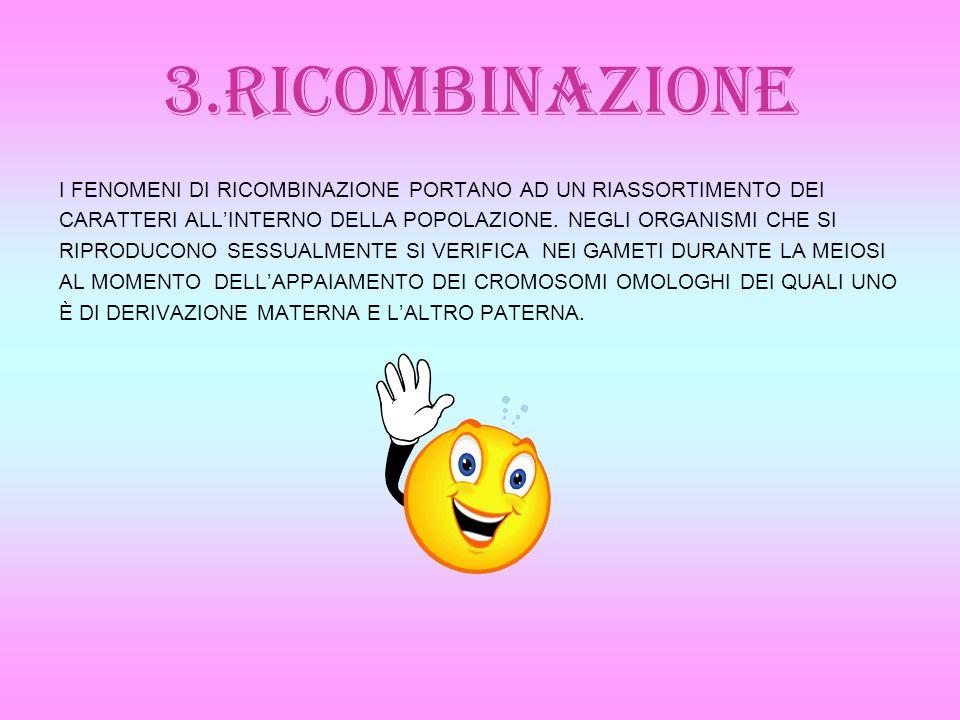 3.RICOMBINAZIONE I FENOMENI DI RICOMBINAZIONE PORTANO AD UN RIASSORTIMENTO DEI CARATTERI ALLINTERNO DELLA POPOLAZIONE. NEGLI ORGANISMI CHE SI RIPRODUC
