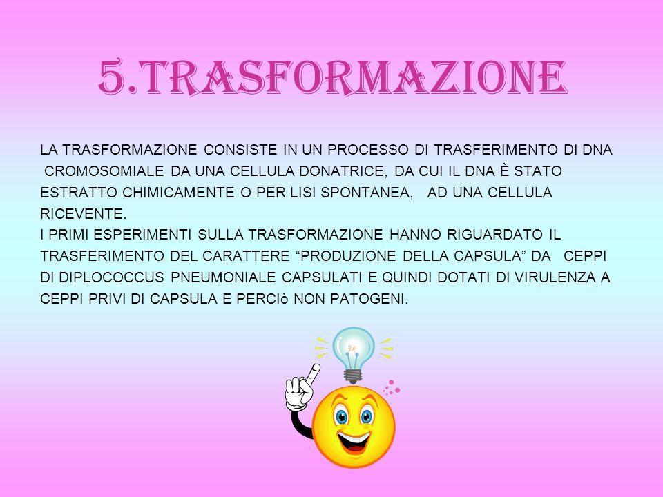 5.TRASFORMAZIONE LA TRASFORMAZIONE CONSISTE IN UN PROCESSO DI TRASFERIMENTO DI DNA CROMOSOMIALE DA UNA CELLULA DONATRICE, DA CUI IL DNA È STATO ESTRAT