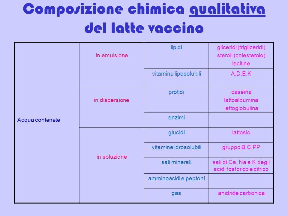 Composizione chimica qualitativa del latte vaccino Acqua contenete in emulsione lipidigliceridi (trigliceridi) steroli (colesterolo) lecitine vitamine