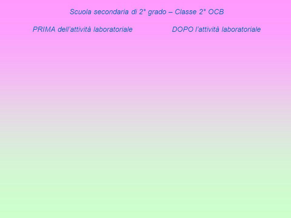Scuola secondaria di 2° grado – Classe 2° OCB PRIMA dellattività laboratoriale DOPO lattività laboratoriale