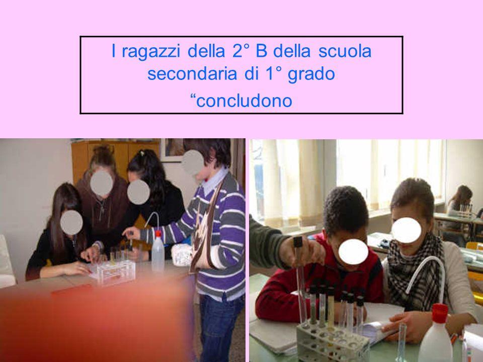 Scheda-alunni per la scuola secondaria di 1° grado Classe-------------------------- Data----------------------------- Saggi chimici esplorativi svolti a gruppi di 2 alunni n.2 SAGGIO ALLALIZARINA Esperienza pratica OccorrenteMateriali: provette lunghe a fondo tondo con tappo n.2, portaprovette, pipette graduate da 2 ml n.3, propipette a 3 valvole.