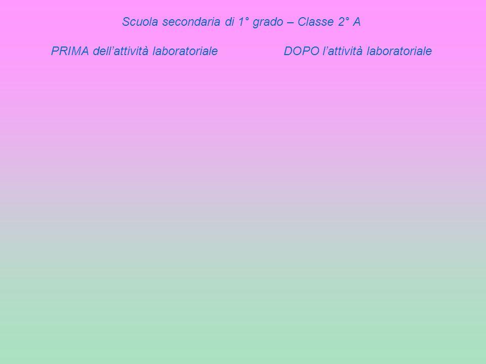 Scuola secondaria di 1° grado – Classe 2° A PRIMA dellattività laboratoriale DOPO lattività laboratoriale