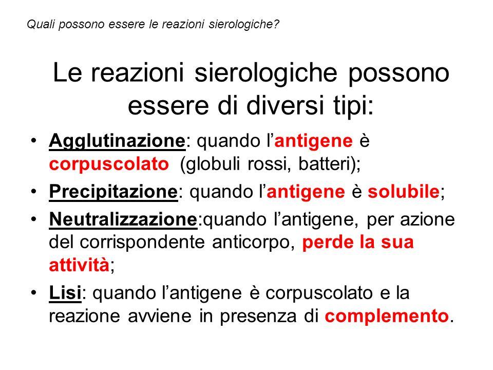Le reazioni sierologiche possono essere di diversi tipi: Agglutinazione: quando lantigene è corpuscolato (globuli rossi, batteri); Precipitazione: qua