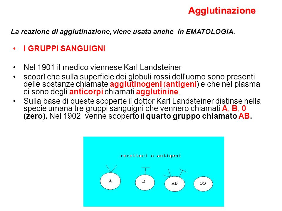 I GRUPPI SANGUIGNI Nel 1901 il medico viennese Karl Landsteiner scoprì che sulla superficie dei globuli rossi dell'uomo sono presenti delle sostanze c