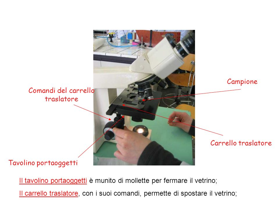 Tavolino portaoggetti Campione Comandi del carrello traslatore Carrello traslatore Il tavolino portaoggetti è munito di mollette per fermare il vetrin