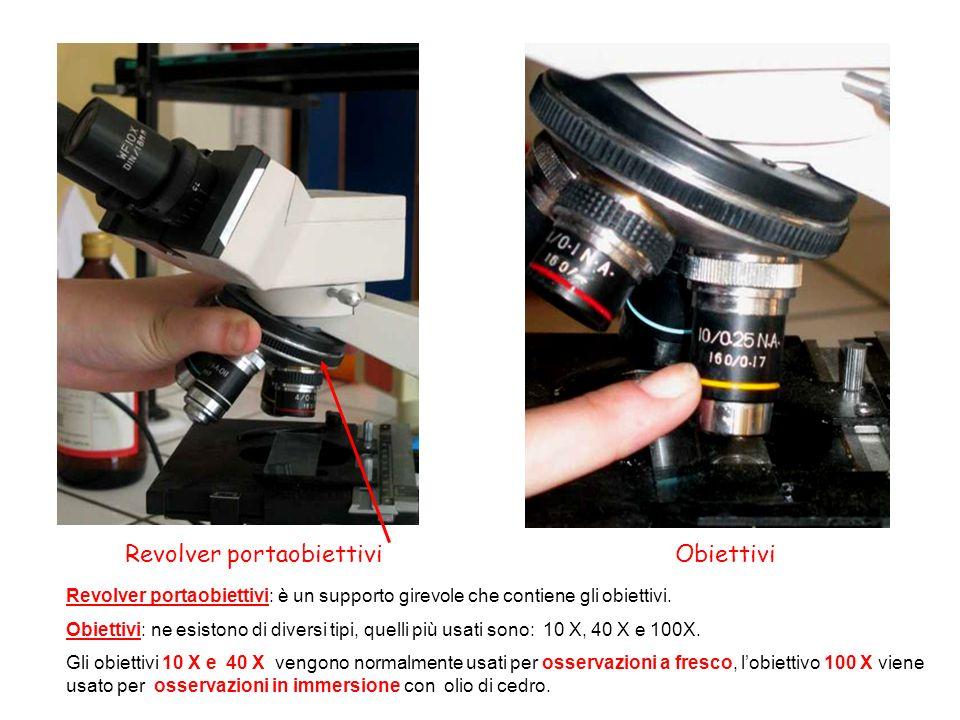 Revolver portaobiettiviObiettivi Revolver portaobiettivi: è un supporto girevole che contiene gli obiettivi. Obiettivi: ne esistono di diversi tipi, q