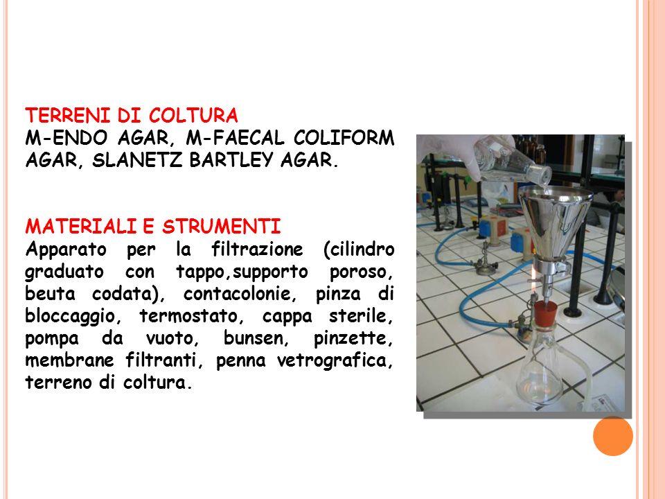 TERRENI DI COLTURA M-ENDO AGAR, M-FAECAL COLIFORM AGAR, SLANETZ BARTLEY AGAR. MATERIALI E STRUMENTI Apparato per la filtrazione (cilindro graduato con