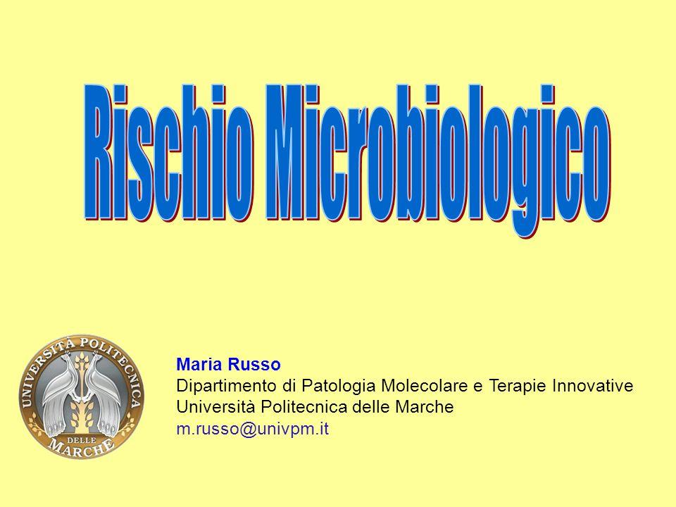 Maria Russo Dipartimento di Patologia Molecolare e Terapie Innovative Università Politecnica delle Marche m.russo@univpm.it