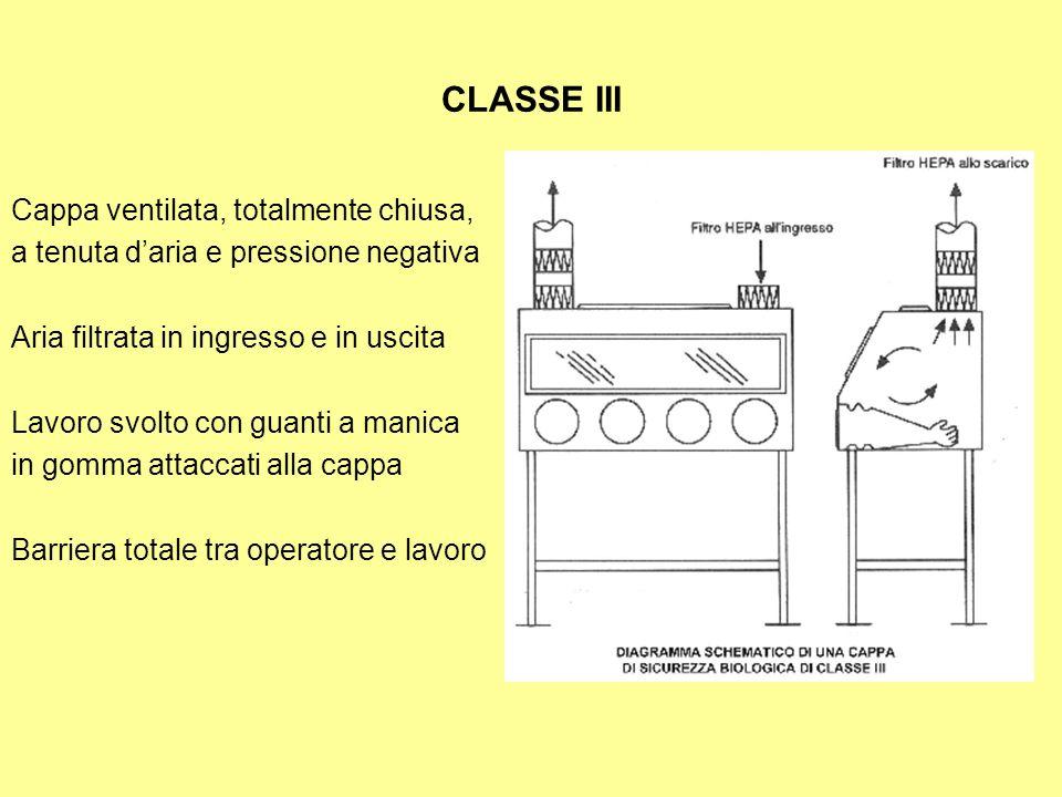 CLASSE III Cappa ventilata, totalmente chiusa, a tenuta daria e pressione negativa Aria filtrata in ingresso e in uscita Lavoro svolto con guanti a ma