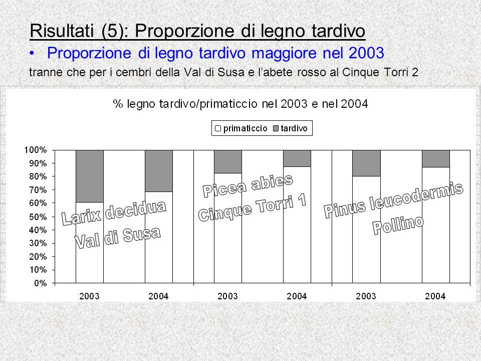 Risultati (5): Proporzione di legno tardivo Proporzione di legno tardivo maggiore nel 2003 tranne che per i cembri della Val di Susa e labete rosso al Cinque Torri 2