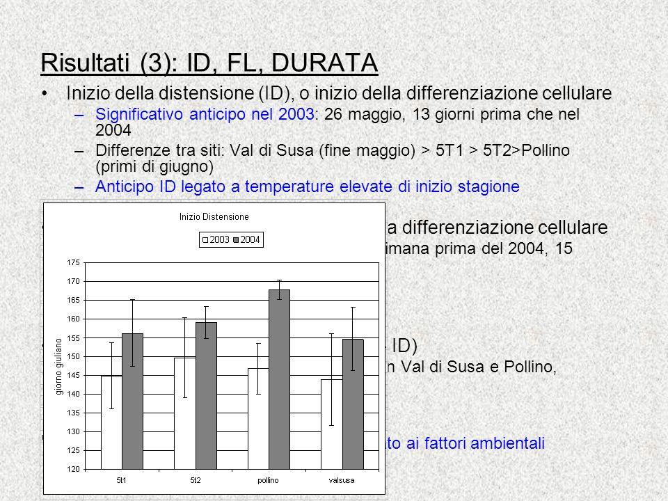 Risultati (3): ID, FL, DURATA Inizio della distensione (ID), o inizio della differenziazione cellulare –Significativo anticipo nel 2003: 26 maggio, 13 giorni prima che nel 2004 –Differenze tra siti: Val di Susa (fine maggio) > 5T1 > 5T2>Pollino (primi di giugno) –Anticipo ID legato a temperature elevate di inizio stagione Fine della lignificazione (FL), o fine della differenziazione cellulare –Significativo anticipo nel 2003 (una settimana prima del 2004, 15 settembre) –Differenze nei due anni nei diversi siti –Differenza tra le specie DURATA della differenziazione (= FL – ID) –Nel 2003 durata maggiore nelle piante in Val di Susa e Pollino, minore in quelle al 5T1 e 5T2 –Differenza tra le specie FL e DURATA non chiaro andamento legato ai fattori ambientali