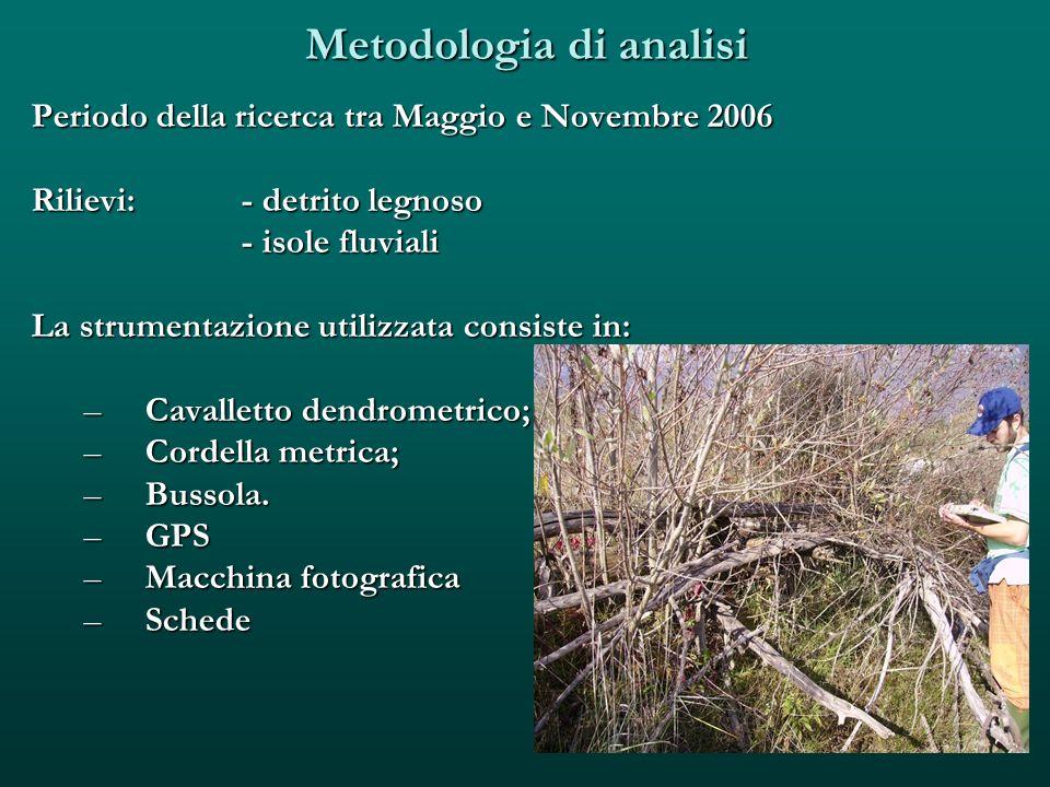 Metodologia di analisi Periodo della ricerca tra Maggio e Novembre 2006 Rilievi: - detrito legnoso - isole fluviali La strumentazione utilizzata consi