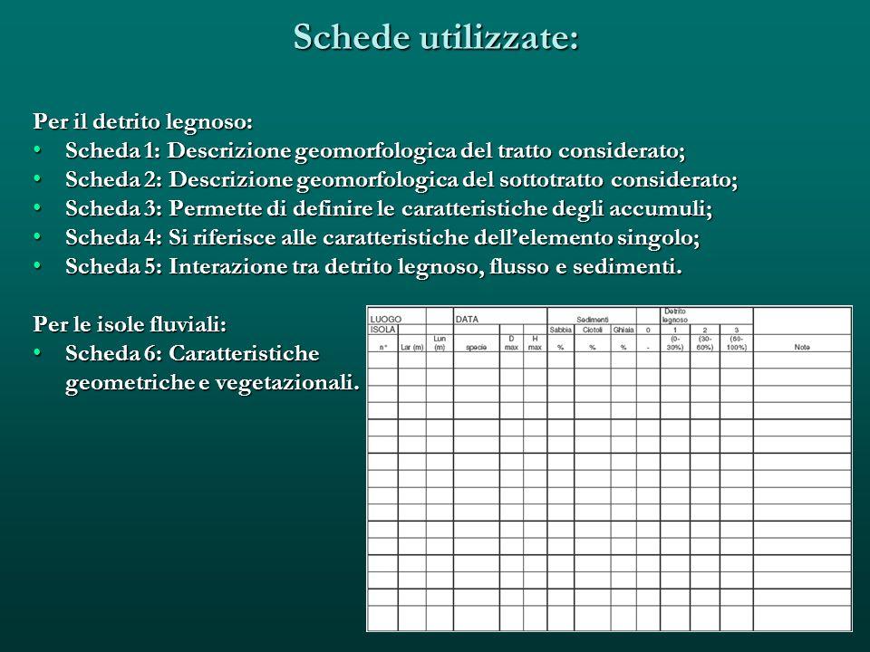 Schede utilizzate: Per il detrito legnoso: Scheda 1: Descrizione geomorfologica del tratto considerato;Scheda 1: Descrizione geomorfologica del tratto