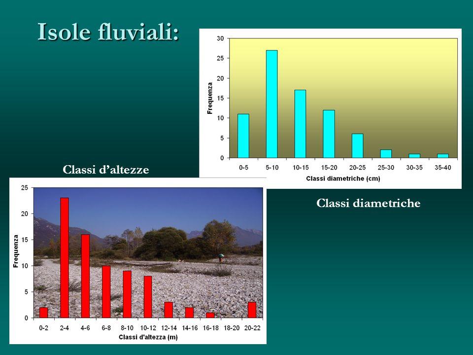 Isole fluviali: cm Classi diametriche Classi daltezze