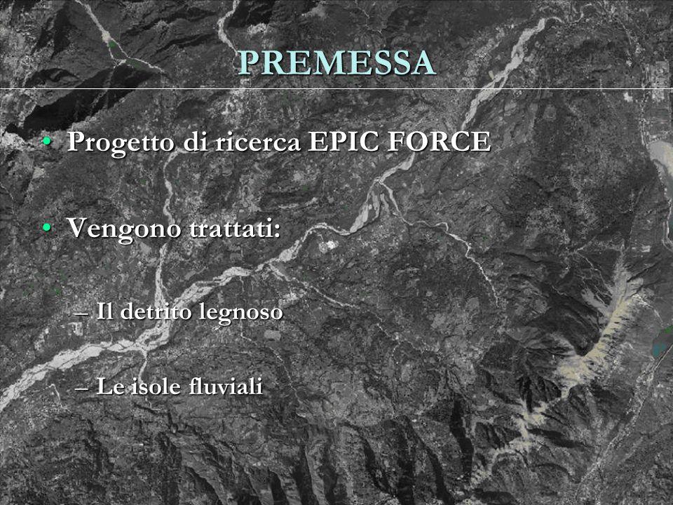PREMESSA Progetto di ricerca EPIC FORCEProgetto di ricerca EPIC FORCE Vengono trattati:Vengono trattati: –Il detrito legnoso –Le isole fluviali