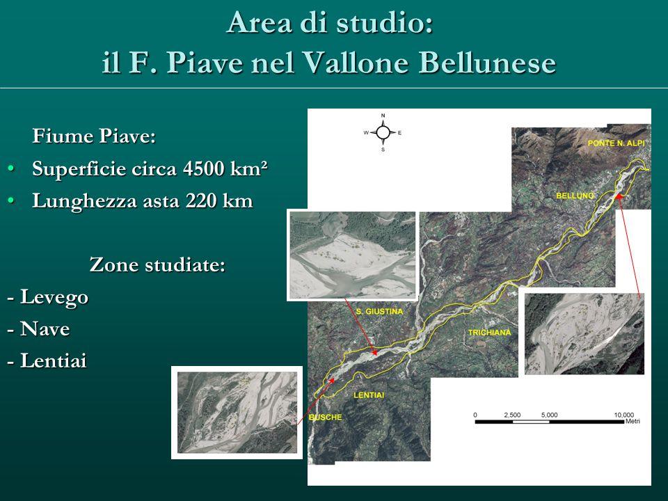 Area di studio: il F. Piave nel Vallone Bellunese Fiume Piave: Superficie circa 4500 km²Superficie circa 4500 km² Lunghezza asta 220 kmLunghezza asta