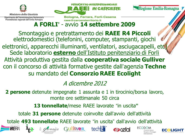 A FORLI - avvio 14 settembre 2009 Smontaggio e pretrattamento dei RAEE R4 Piccoli elettrodomestici (telefonini, computer, stampanti, giochi elettronic