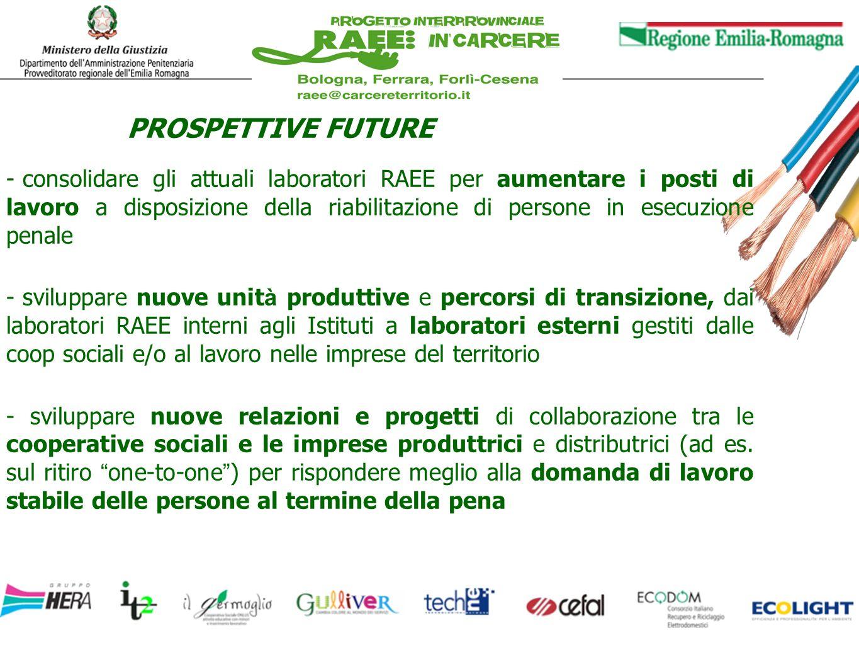 PROSPETTIVE FUTURE - consolidare gli attuali laboratori RAEE per aumentare i posti di lavoro a disposizione della riabilitazione di persone in esecuzi