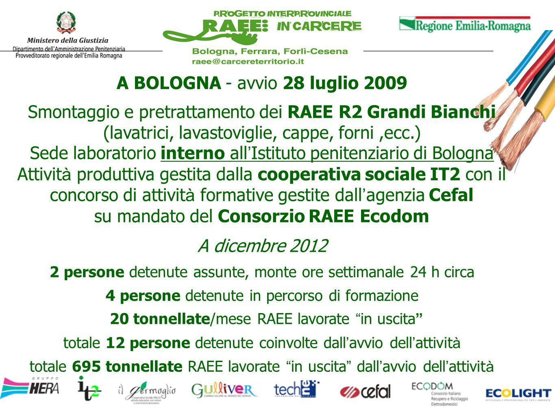 grazie per l attenzione! www.raeeincarcere.org INFO coordinamento@raeeincarcere.org