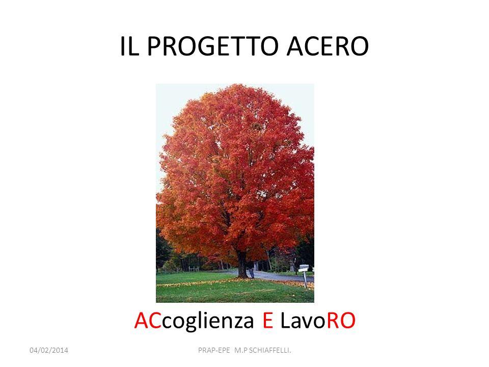 IL PROGETTO ACERO 04/02/2014PRAP-EPE M.P SCHIAFFELLI. ACcoglienza E LavoRO
