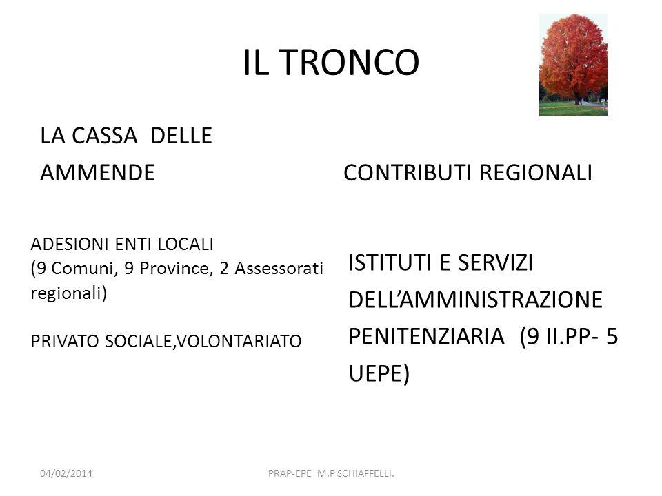 IL TRONCO LA CASSA DELLE AMMENDECONTRIBUTI REGIONALI 04/02/2014PRAP-EPE M.P SCHIAFFELLI. ADESIONI ENTI LOCALI (9 Comuni, 9 Province, 2 Assessorati reg