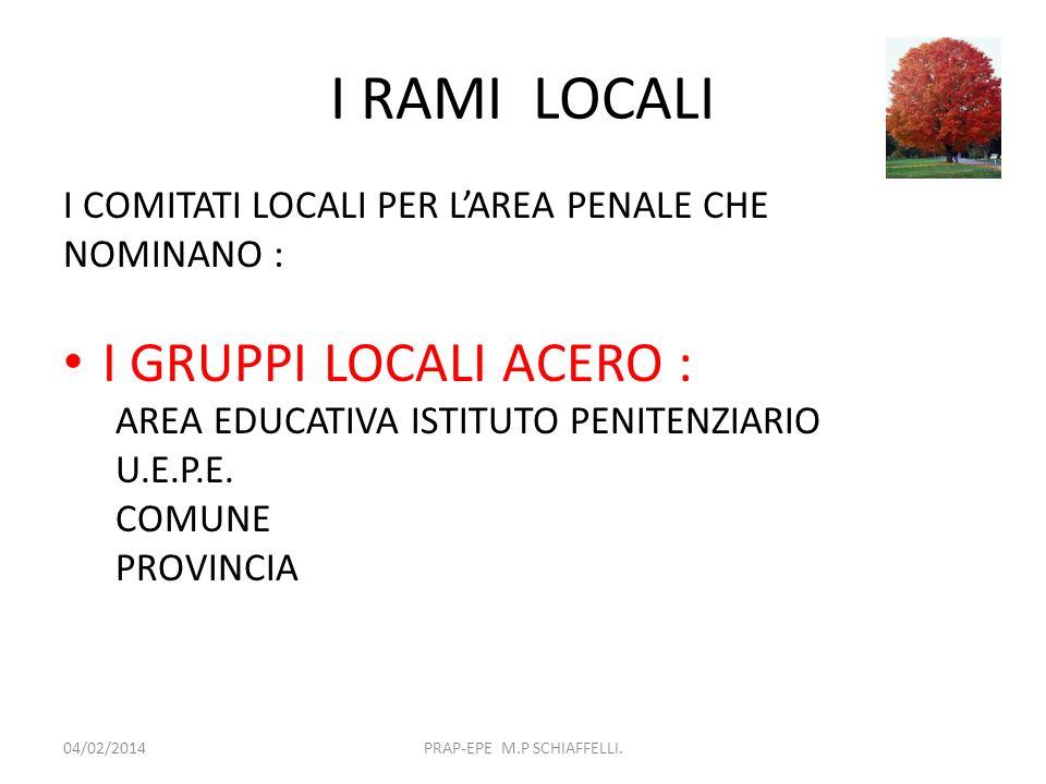 I RAMI LOCALI IL GRUPPO LOCALE ACERO INDIVIDUA I SOGGETTI: 04/02/2014PRAP-EPE M.P SCHIAFFELLI.