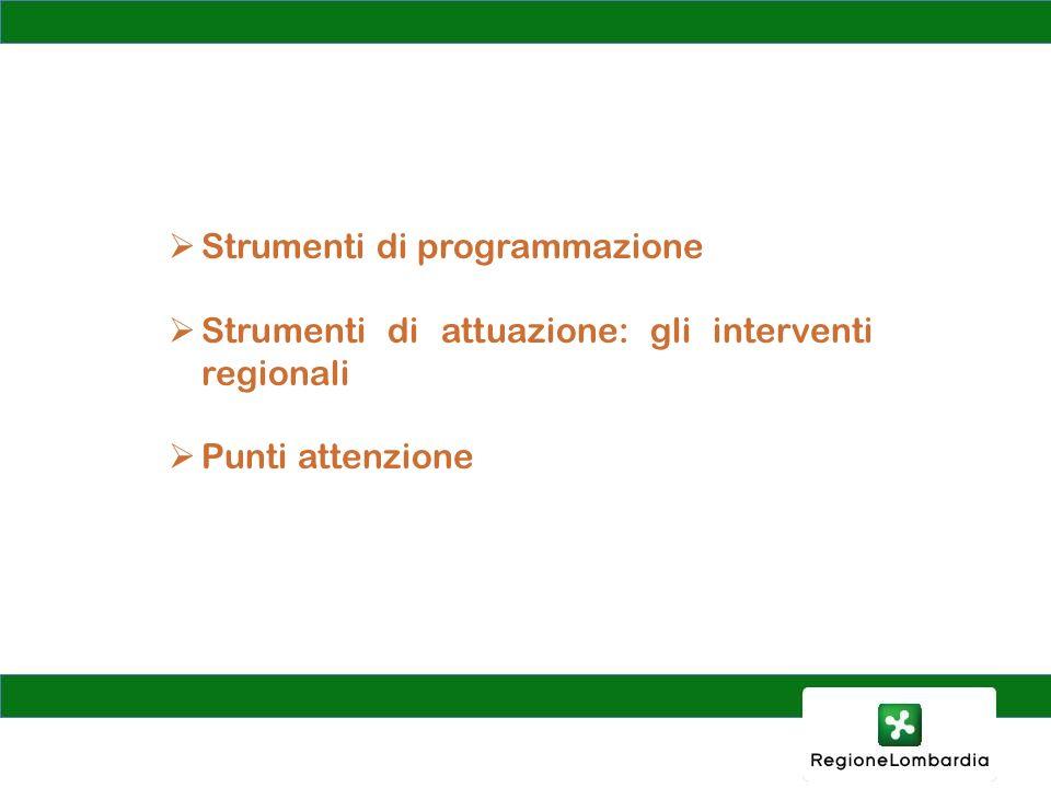 Strumenti di programmazione Strumenti di attuazione: gli interventi regionali Punti attenzione