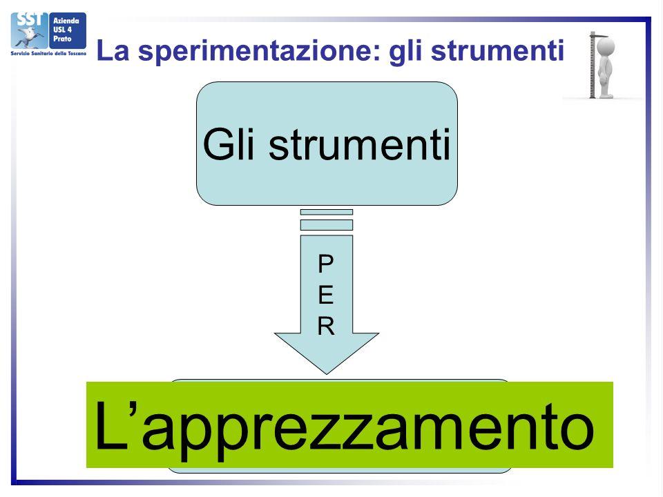 Gli strumenti PERPER LA VALUTAZIONE Lapprezzamento La sperimentazione: gli strumenti