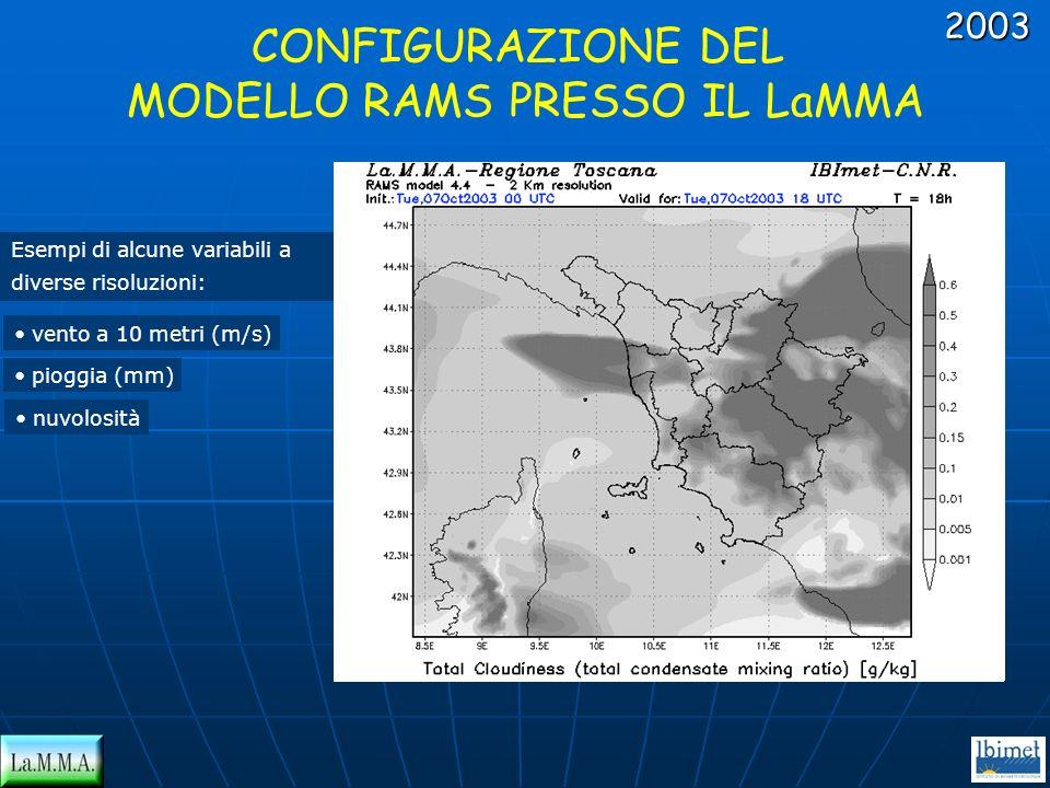 Esempi di alcune variabili a diverse risoluzioni: vento a 10 metri (m/s) pioggia (mm) nuvolosità CONFIGURAZIONE DEL MODELLO RAMS PRESSO IL LaMMA2003