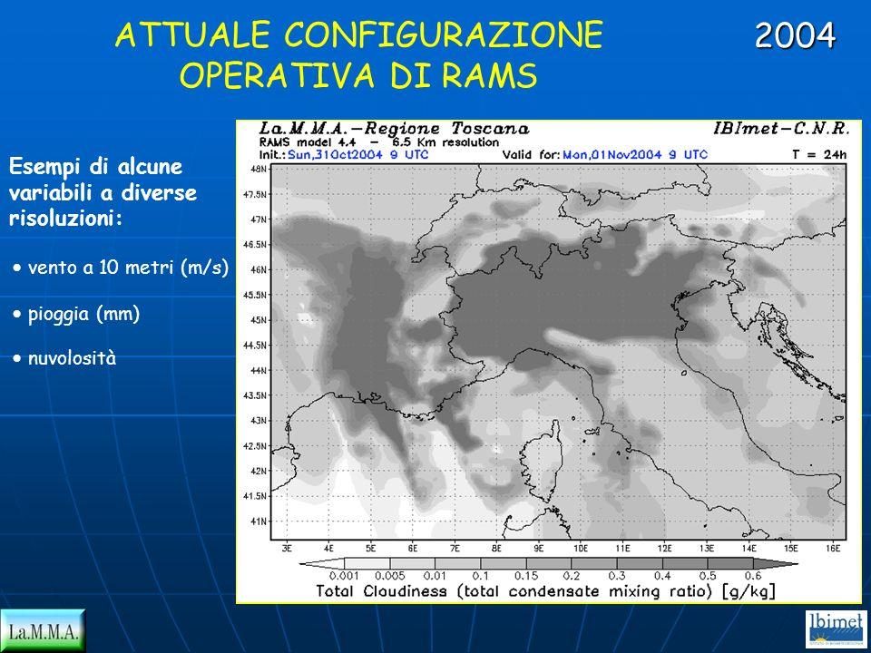 Esempi di alcune variabili a diverse risoluzioni: ATTUALE CONFIGURAZIONE OPERATIVA DI RAMS vento a 10 metri (m/s) pioggia (mm) nuvolosità 2004