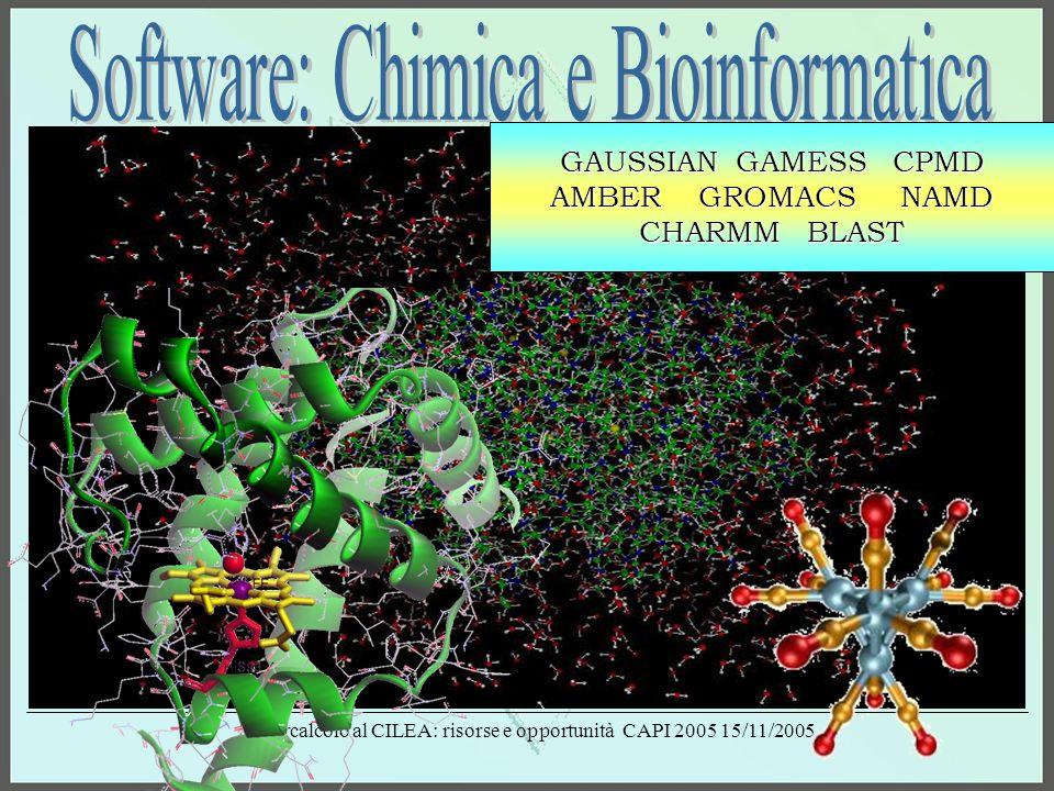Supercalcolo al CILEA: risorse e opportunità CAPI 2005 15/11/2005 GAUSSIAN GAMESS CPMD AMBER GROMACS NAMD CHARMM BLAST
