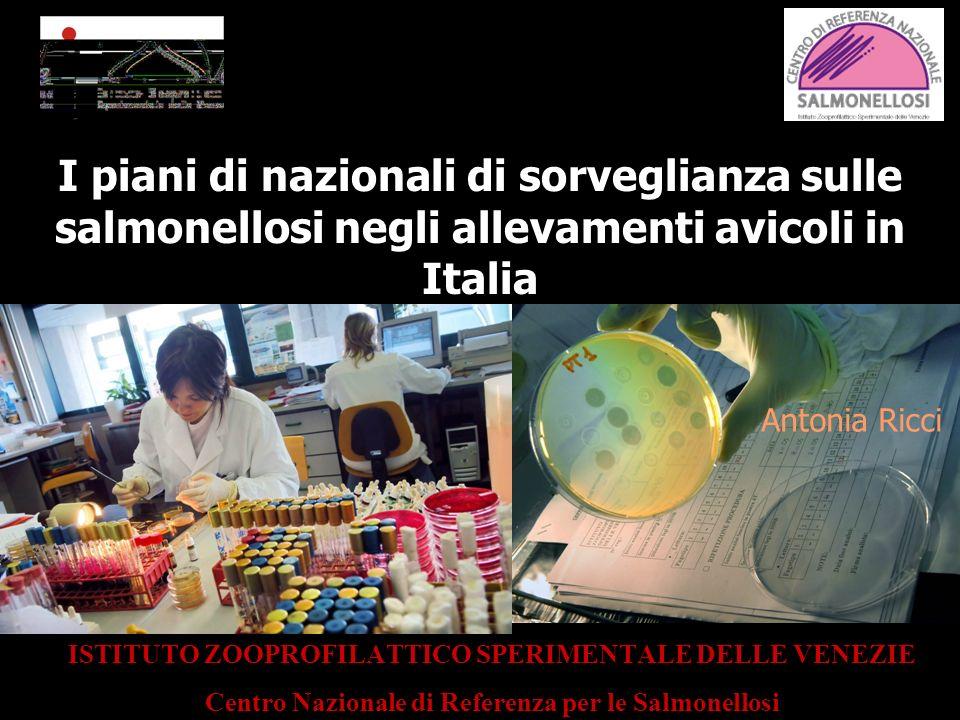 I piani di nazionali di sorveglianza sulle salmonellosi negli allevamenti avicoli in Italia ISTITUTO ZOOPROFILATTICO SPERIMENTALE DELLE VENEZIE Centro