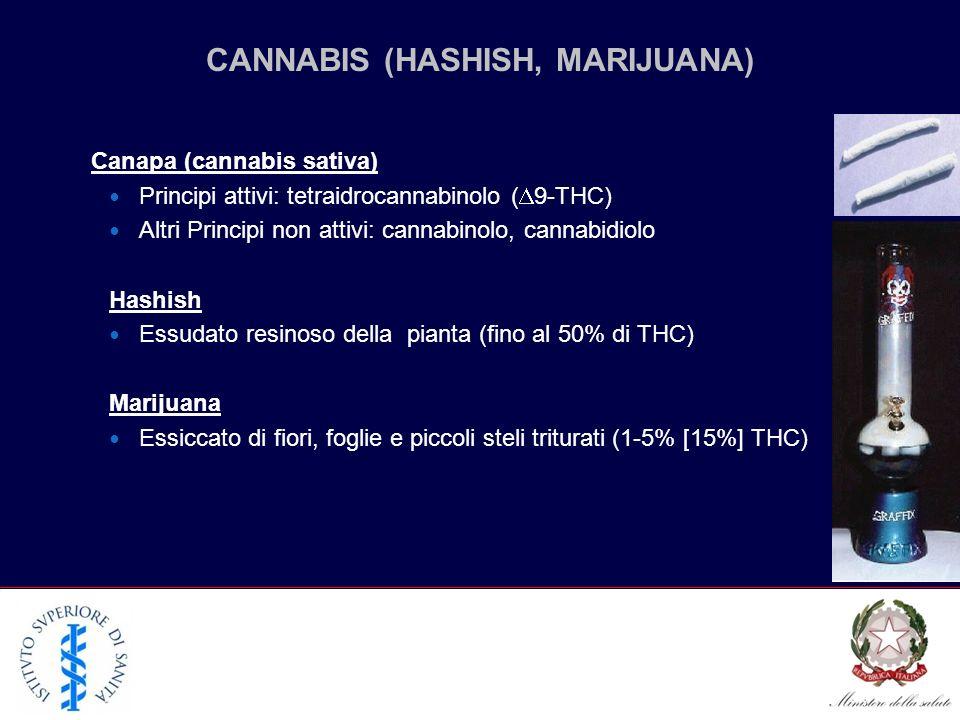 Canapa (cannabis sativa) Principi attivi: tetraidrocannabinolo ( 9-THC) Altri Principi non attivi: cannabinolo, cannabidiolo Hashish Essudato resinoso della pianta (fino al 50% di THC) Marijuana Essiccato di fiori, foglie e piccoli steli triturati (1-5% [15%] THC) CANNABIS (HASHISH, MARIJUANA)