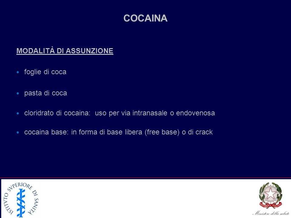 COCAINA MODALITÀ DI ASSUNZIONE foglie di coca pasta di coca cloridrato di cocaina: uso per via intranasale o endovenosa cocaina base: in forma di base libera (free base) o di crack