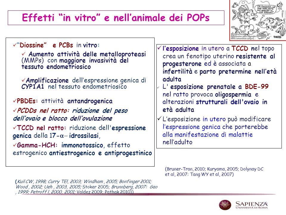 10 Diossine e PCBs in vitro: Aumento attività delle metalloproteasi (MMPs) con maggiore invasività del tessuto endometriosico Amplificazione dellespre