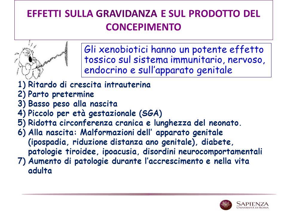 1)Ritardo di crescita intrauterina 2)Parto pretermine 3)Basso peso alla nascita 4)Piccolo per età gestazionale (SGA) 5)Ridotta circonferenza cranica e lunghezza del neonato.